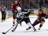 Admirals2012preview_storyflow