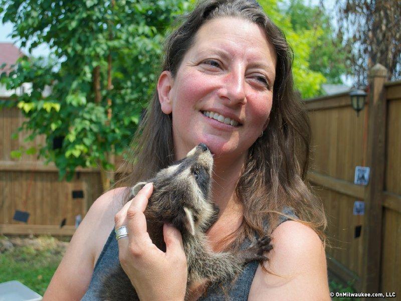 baby raccoon & hoomin