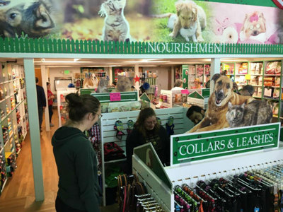 Marcus Lemonis-backed Bentley's Pet Stuff opens six new shops in Milwaukee Image