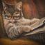 The Caturday Evening Post: the best of cats on the web  Image