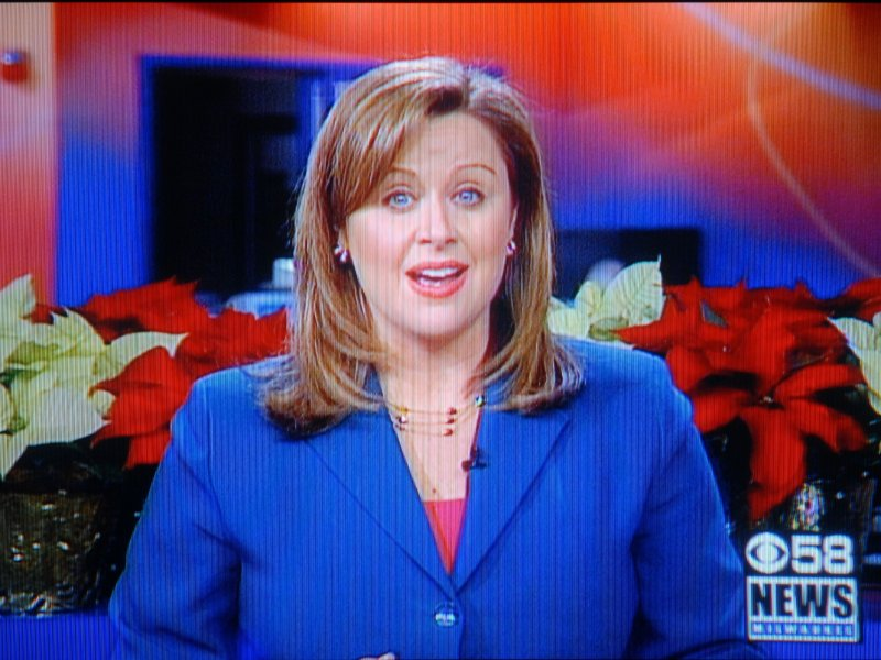 """Don't blame us, folks,"" said anchor Michele McCormack."