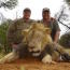 Does anyone actually think killing Cecil - or any lion - is a good thing? Image
