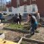 Kick-off party and classes planned for Clarke Square Community Garden Image
