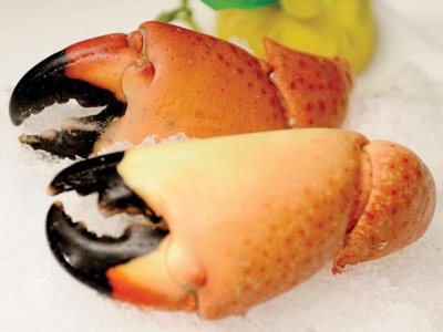 Stone crab is in season: So, let's get cracking