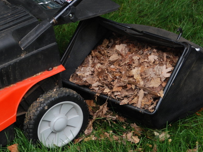 Melinda Myers' checklist for fall garden and landscape care