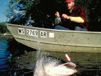 Musky (and salmon) mania take Wisconsin autumn by storm