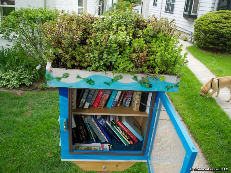 Little Free Library Sprouts Small Green Roof Onmilwaukee
