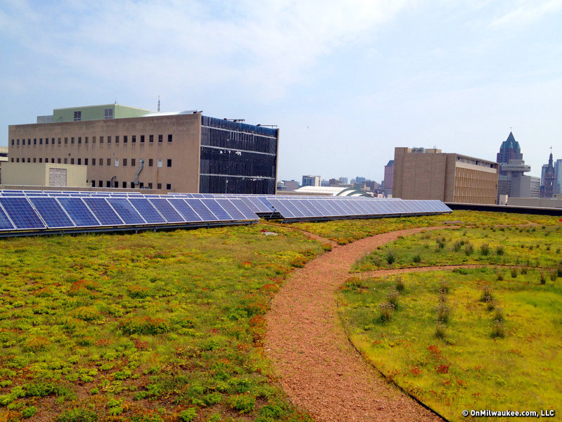 Central Library S Green Roof Takes Root Onmilwaukee