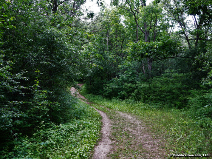 Connect with nature at the Kettle Moraine Forest Image