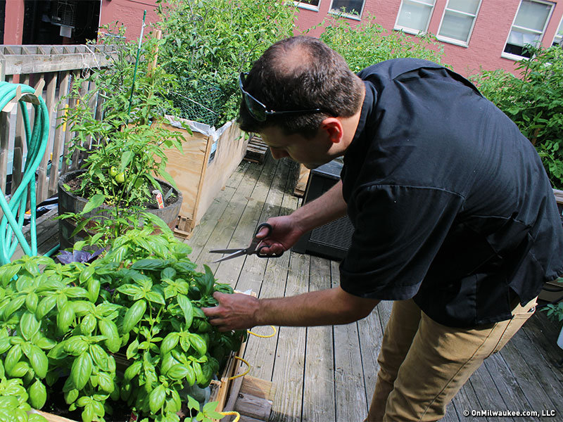 Milwaukee\'s secret gardens: The second floor deck garden at Onesto ...