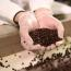 Made in Milwaukee: Cargill Cocoa & Chocolate Image