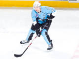 Milwaukeeadmirals2014playoffpreview_storyflow