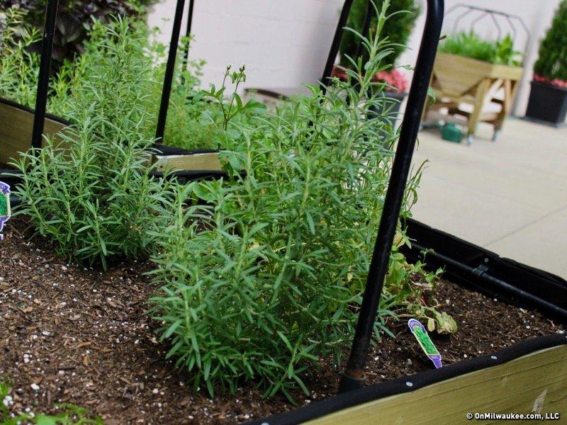 Milwaukee\'s secret gardens: The Milwaukee Chophouse rooftop garden ...