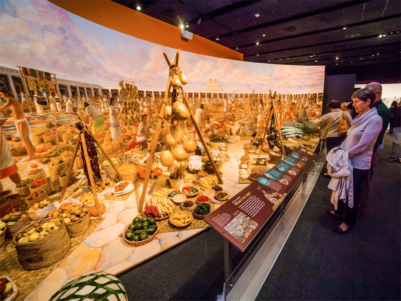Milwaukee Public Museum Explores Food From Farm To Fork