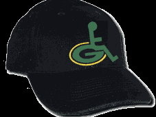 One of the merch items available at Packers-suck.com.