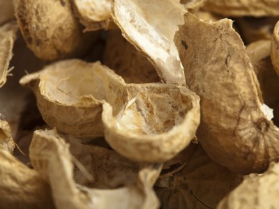 Tossing peanut shells on floors remains good, clean fun