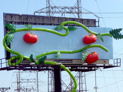 That vine billboard on I-94 Image