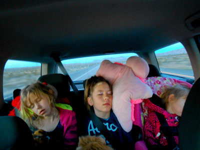 8 essential family road trip tips