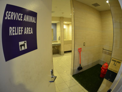 Airport unveils new service animal area