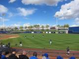 2013 Brewers Spring Training guide Image