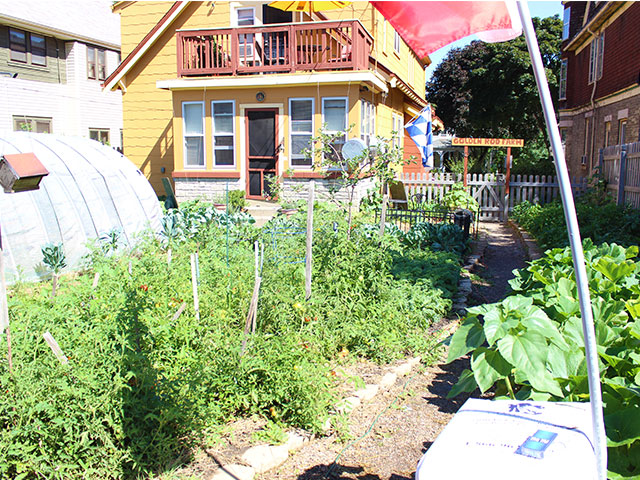but seefeldt says his farm at w juneau ave which heu0027s named golden rod cottage have been possible if it werenu0027t for tragic