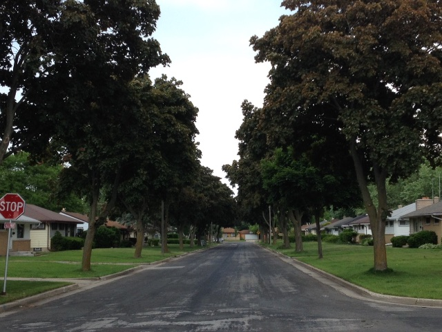 One of the many tree-lined streets in Valhalla.