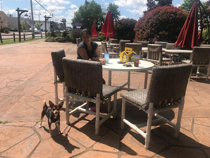 Wisconsin Dells Offers Fetching Dog Friendly Vacations