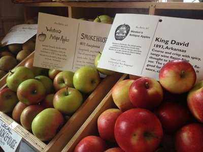 Sunny Slope brings heritage apple products to market