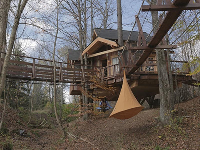 """Treehouse Masters"" Looking Up In 2014"