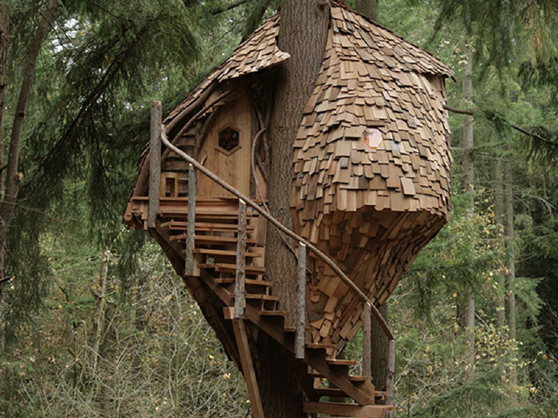 treehouse masters tree houses. The Third Season Of Animal Planet\u0027s \ Treehouse Masters Tree Houses