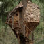 Animal Planet's 'Treehouse Masters' swings in with new season Image