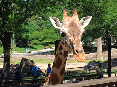 There's more to the Milwaukee County Zoo than meets the eye