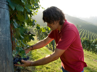 Vietti's Currado feels the joy and weight of winemaking tradition