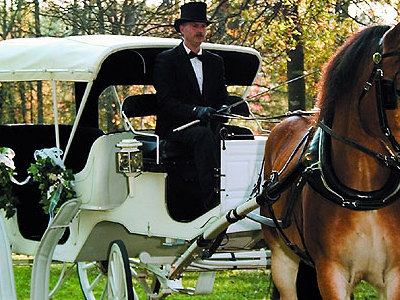 Wedding Guides on Onmilwaukee Com Wedding Guide  Wedding Transportation  The Ride Of