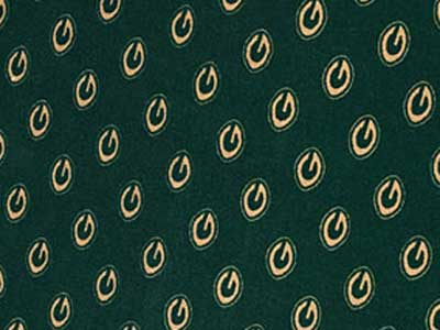 How many G's are there in the Packers locker room carpeting?